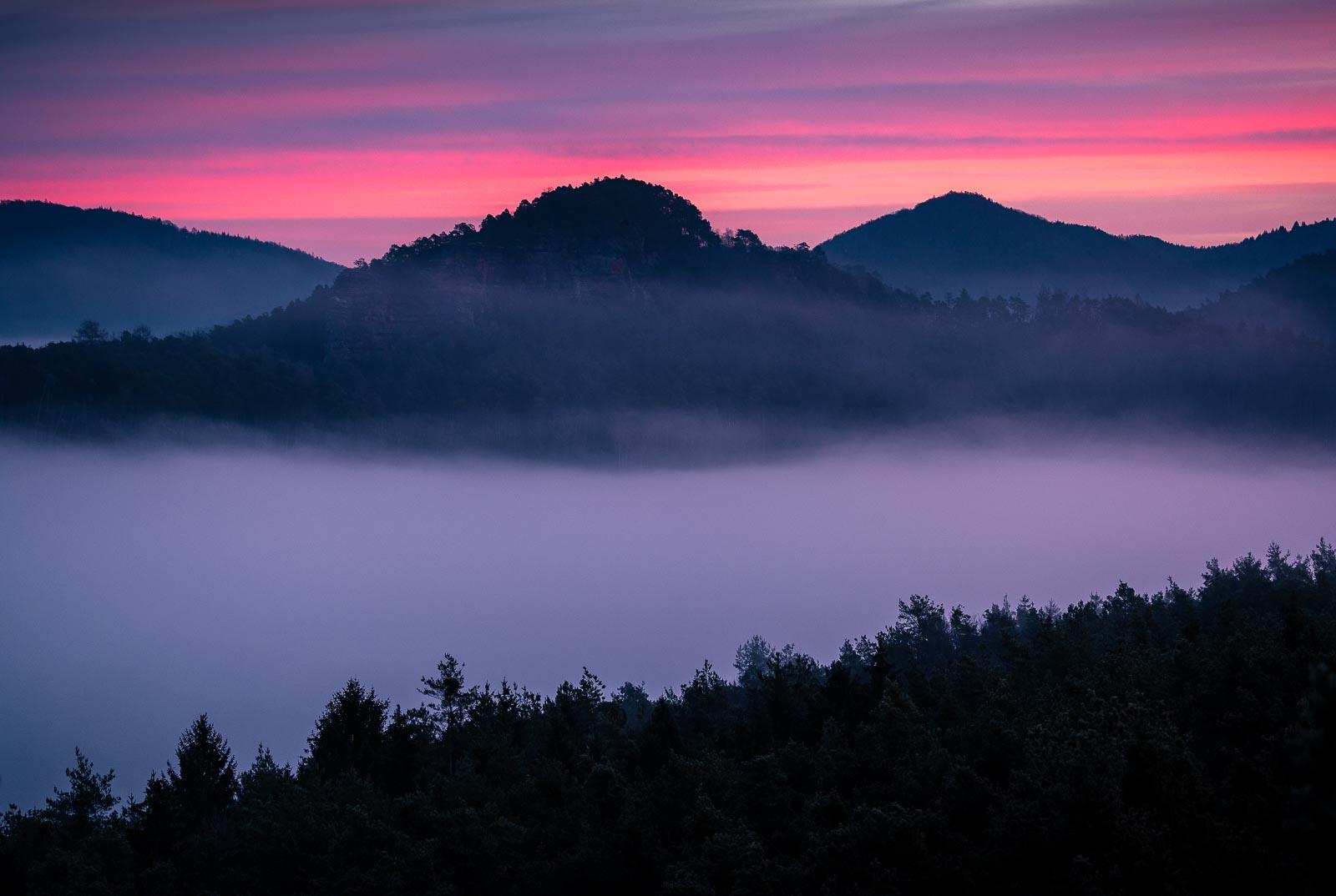 Pfälzerwald, pfalz, nebel