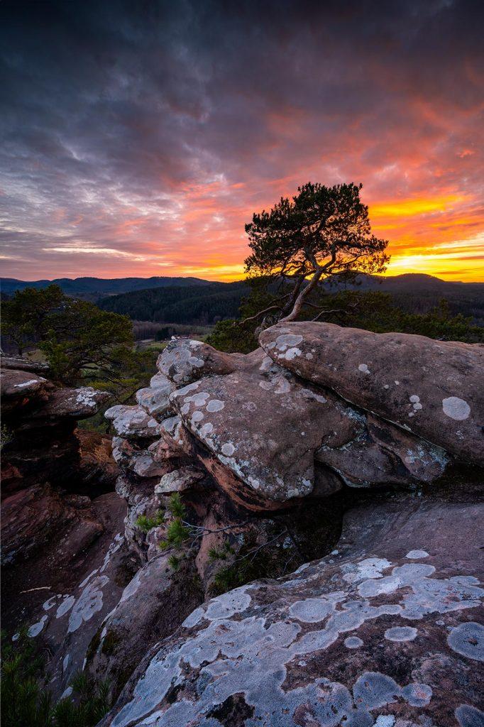 Sonnenuntergang am Sprinzelfels