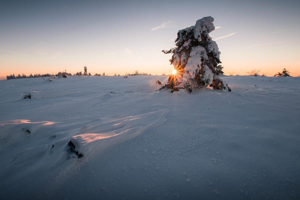 hornisgrinde winter