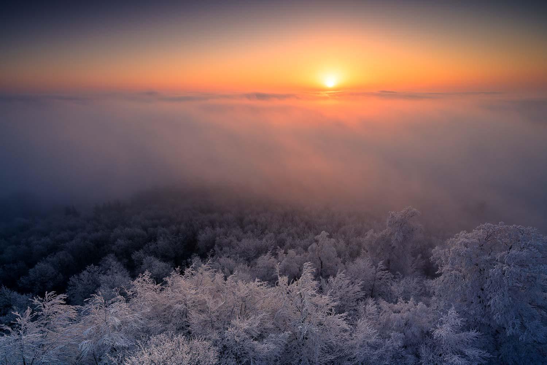 pfälzerwald winter