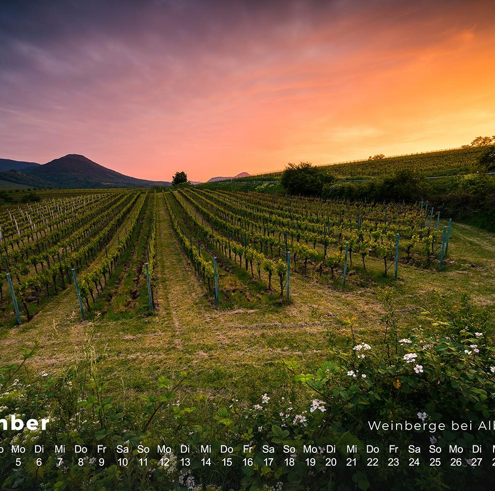 pfalz kalender